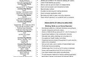 Mechanic Sample Resume by Welder Resume Skills