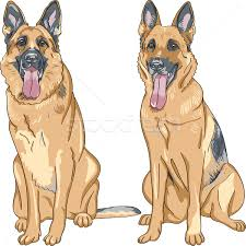 vector color sketch dog german shepherd breed vector illustration