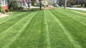 kihn lawn care u2013 you grow it we u0027ll mow it