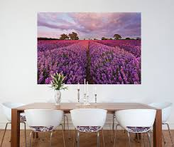 15 murals to make your studio apartment a masterpiece brewster home lavender wall mural
