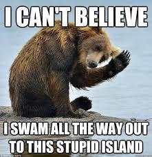 Coke Bear Meme - 35 most funniest bear meme pictures and photos