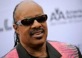 Was Steve Wonder Born Blind Stevie Wonder Do You Like
