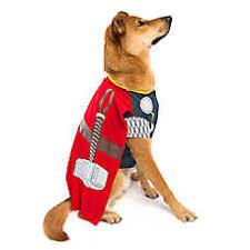 Extra Large Dog Costumes Halloween Dog Costumes Shop Small U0026 Large Dog Costumes Petsmart