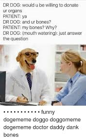 Dog Doctor Meme - dog doctor meme famous dog 2018