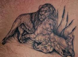 lion tattoos designs whole lion family tattoo lion family