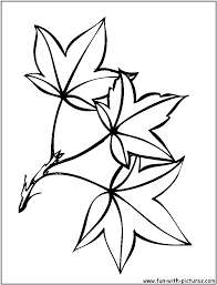 fall leaves coloring pages clipart panda free clipart images