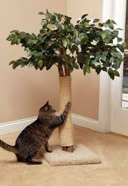 best 25 cat scratching post ideas on pinterest diy cat