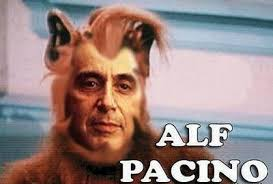 Alf Meme - welcome to alfriday