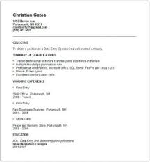Information Technology Resume Template Word Resume Example Unix Experience Resume Sample Environmental