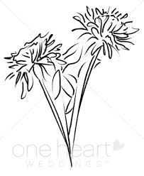 Wedding Flowers Drawing Mums Flowers Clipart Elegant Wedding Flower Sketches