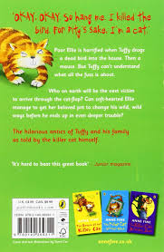 the diary of a killer cat the killer cat amazon co uk anne