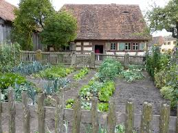 the vegetable garden location location location proverbs 31 woman
