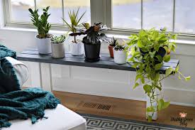 home interior plants diy plant stands to fill your home with greenery