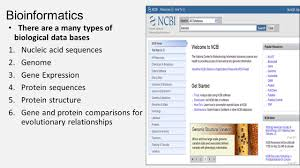 bioinformatics genes proteins and evolutionary relationships