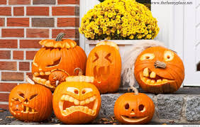 cool halloween pictures funny halloween u2013 thefunnyplace