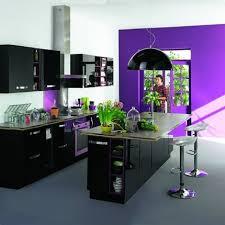 alinea cuisines photo cuisine noir alinea