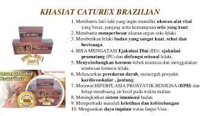 081 229 560 888 caturex asli obat kuat pria herbal agen caturex