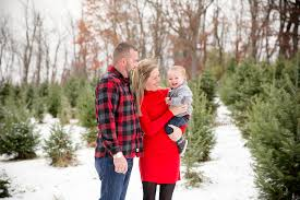 crystal spring tree farm christmas trees lehighton pa christmas