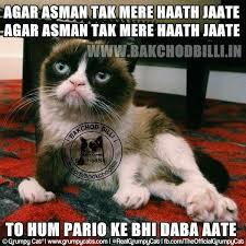 Mere Cat Meme - swe3t simple larka lacklistedymadhav likes askfm