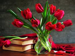 for flower lovers wallpapers hd desktop