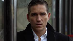 flesh and blood cast and characters person of interest wiki