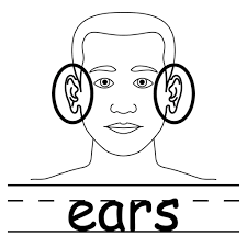 beautiful coloring ear contemporary printable coloring page