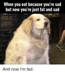 Feeling Sad Meme - 25 best memes about sad sad memes