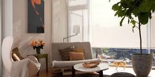 greatly enhance the u0027feel good u0027 vibes in your home and workplace