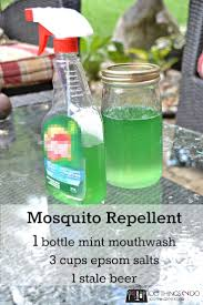 28 best insects images on pinterest pest control household tips