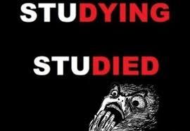 Studying Memes - memes 2014 studying vs studied