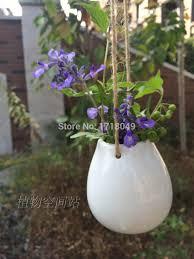 White Wall Planter by Aliexpress Com Buy 3pcs Set White Egg Shaped Ceramic Wall