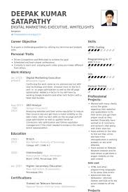 digital marketing resume digital marketing resume template amazing free resumes resume