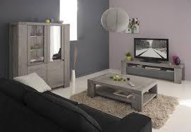 Salon Design Contemporain by Indogate Com Salon Sejour Contemporain
