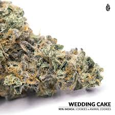Wedding Cake Kush Fresh Cannabis Buds