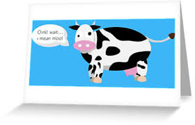 cow greeting cards derpy cow greeting cards by katherine gittins redbubble