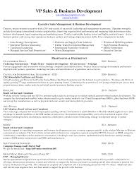 Facilitator Resume Sample by Sample District Sales Plan Vice President Sales Business