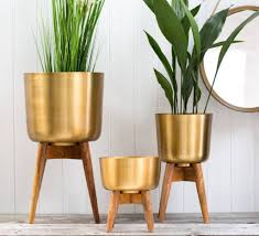 brass plant pot on a wooden stand by the forest co