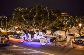 st augustine lights tour nights of lights carriage tours carriage way bed breakfast