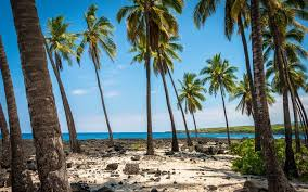 Hawaii travel and leisure images Flights to hawaii could soon be cheaper than ever travel leisure jpg%3