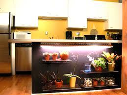 indoor kitchen garden video hgtv