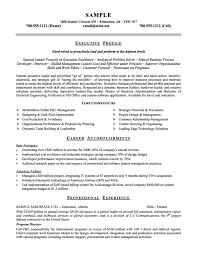 Senior Manager Resume Template Executive Resume Template Resume Badak