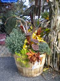 fall container using cabbage ornamental millet dried leaves