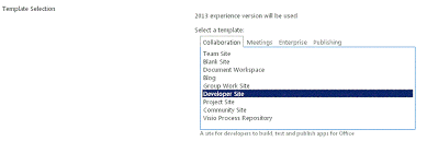 brief overview of sharepoint 2013 developer site template