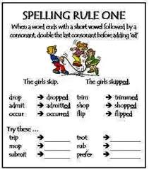 spelling rules google search spelling rules pinterest