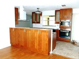 Kitchen Cabinet Design Software Mac Ikea Kitchen Cabinet Design Software Home And Interior