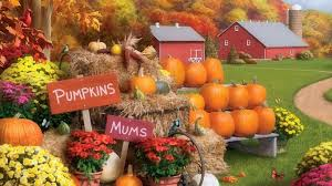 fall pumpkins background pictures farms autumn memories flowers harvest attractions dreams