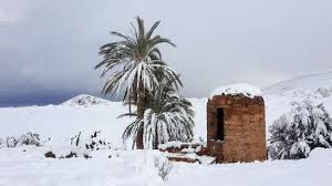 heavy snow in the sahara to 1 m 3 feet weather climate