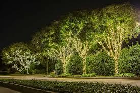 Tree Lights Landscape Lighting 137