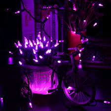 100 led 33ft mini lights 120v purple brizled