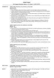 financial planning and analysis resume examples director financial planning resume samples velvet jobs